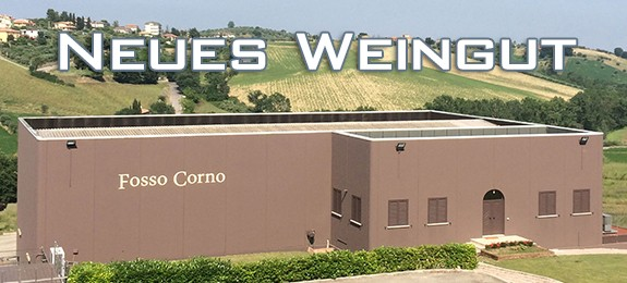media/image/quer-neues-weingut-Fosso-Corno.jpg